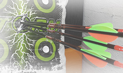 about our compound bow package program photo 8