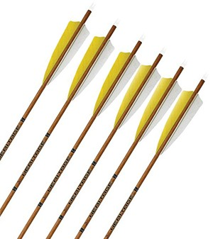REDUCED! Carbon Express Heritage, Custom Carbon Arrows