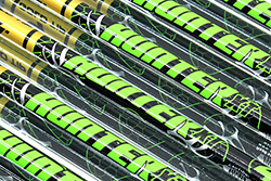 Gold Tip XT Bowhunting Arrows