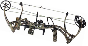 compound bow cam types highlight